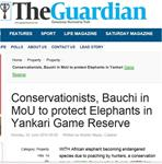 Conservationists, Bauchi in MoU to protect Elephants in Yankari Game Reserve